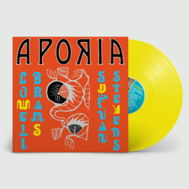 Sufjan Stevens & Lowell Brams Aporia LP - Yellow Vinyl-