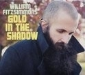 William Fitzsimmons- Gold In The Shadow LP + CD