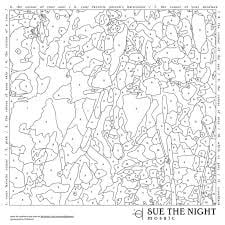 Sue The Night Mosaic LP