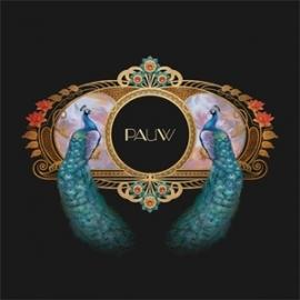 Pauw - Pauw LP