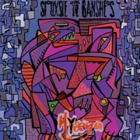 Siouxsie & The Banshees Kaleidoscope LP