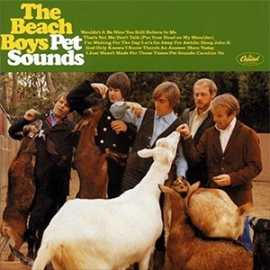 The Beach Boys Pet Sounds 200g LP (Mono)
