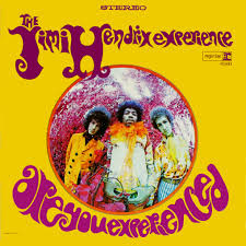 Jimi Hendrix Are You Experienced LP