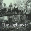 Jayhawks - Tomorrow The Green Grass LP