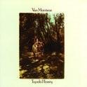 Van Morrison - Tupelo Honey HQ LP