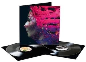 Steven Wilson - Hand.Cannot.Erase 2LP