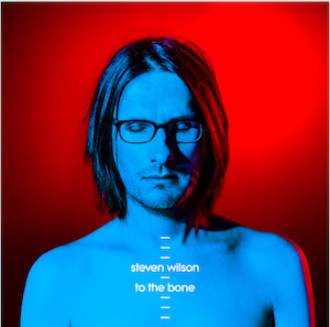 Steven Wilson To The Bone CD