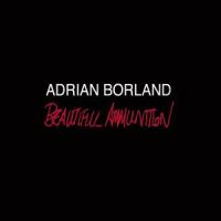 Adrian Borland Beautiful Ammunition 2LP