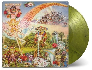 Barry Hay - Only Parrots Frogs & Angels 2LP
