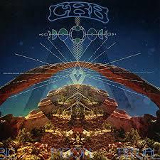 Chris Robinson Brotherhood Big Moon Ritual 2LP
