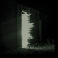 Fink - Horizontalism LP