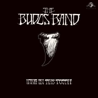 The Budos Band Long in the Tooth LP