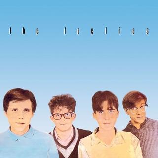 The Feelies Crazy Rhythms LP