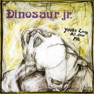 Dinosaur Jr. You're Living All Over Me LP