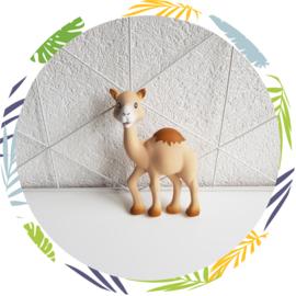 Sophie de giraf  Al'Thir de dromedaris