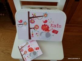 voorbeelden Koffertje met geboortekaartje