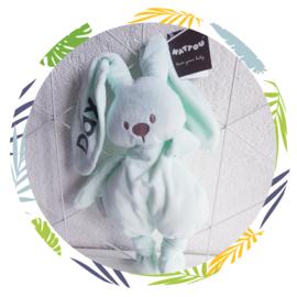 nattou lapidou knuffel mintgroen met naam