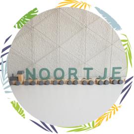 Naamtrein houten letters  oud groen