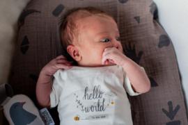 Rompertje hello world