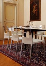 Design Kantinestoel kunststof Diva (5 kleuren)