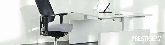 klik hier om onze bureaus met zijwangen te bekijken
