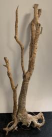Osaka spiderwood XXXXL 70x40x175cm