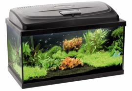 Osaka Classic aquarium 60cm recht complete set
