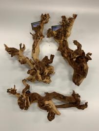 Coral wood L 40-60cm