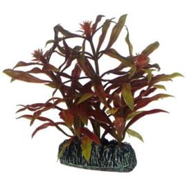Osaka aquarium kunst plant Nesaea 13cm art. 570
