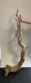 Osaka spiderwood XXXXL 50x65x170cm