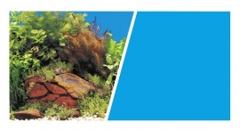 Achterwand poster ``planten/blauw``