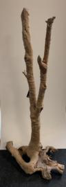 Osaka spiderwood XXXXL 85x60x185cm
