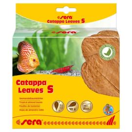 Sera Catappa Leaves Small 10 stuks