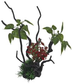 SF Deco spider & plants L