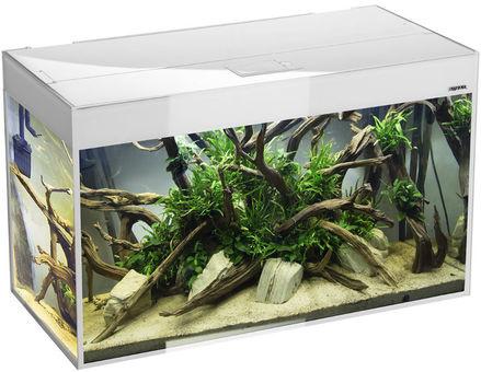 Osaka Glossy  aquarium 150 White *Safe Tank*