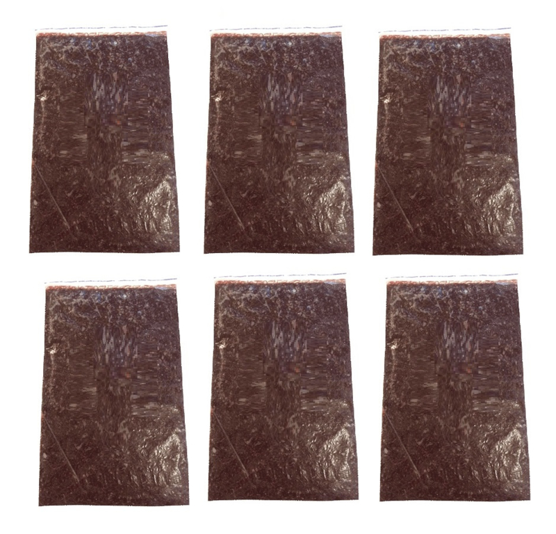 Diepvriesvoeding Rode Muggenlarven 6x 500 gram plaat