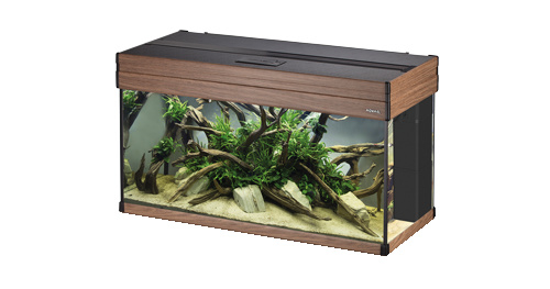Osaka Aspect aquarium 100 Salina Oak  set