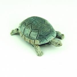 00330 Schildpad. (AK)