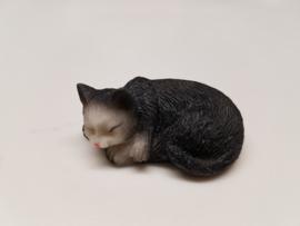 03515 Liggende slapende zwarte poes (AL)
