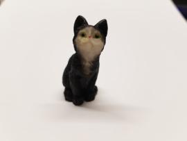 01777 Rechtop zittende zwarte kat/poes. (AQ)