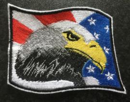 Amerika/adelaar