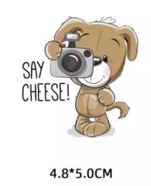 Hondje met fototoestel