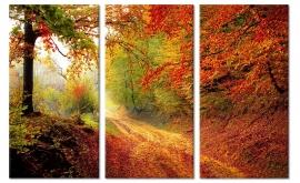 Canvasdoek Herfst
