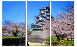 Kumamoto Kasteel Japan