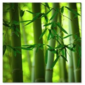 Bamboe Mix & Match