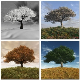 Seasons Vierluik op canvas