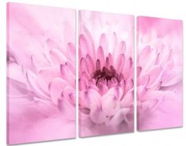Schilderij Roze Chrysant