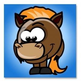 Zoo Baby Paardje