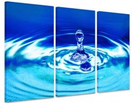 Canvas doek Blauwe Druppel