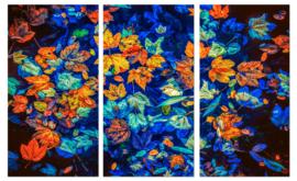 Fall leaves: foto schilderij herfstbladeren